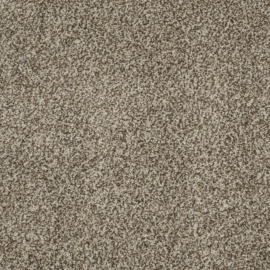 STAINMASTER TruSoft Peaceful Mood I Storm Cloud Textured Indoor Carpet