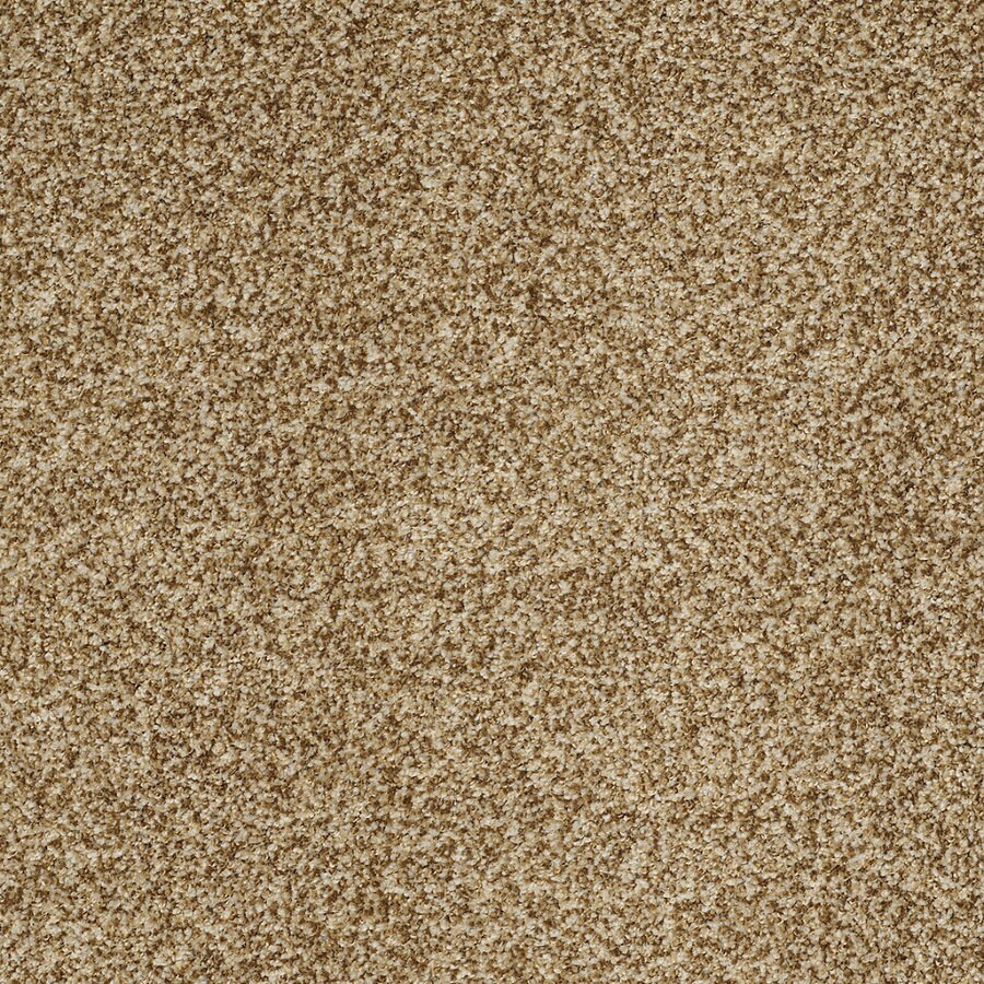 STAINMASTER TruSoft Peaceful Mood I Frontier Textured Indoor Carpet