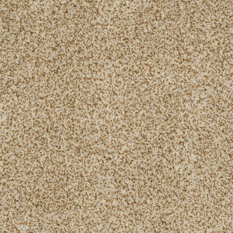 STAINMASTER TruSoft Private Oasis III Apollo Textured Indoor Carpet
