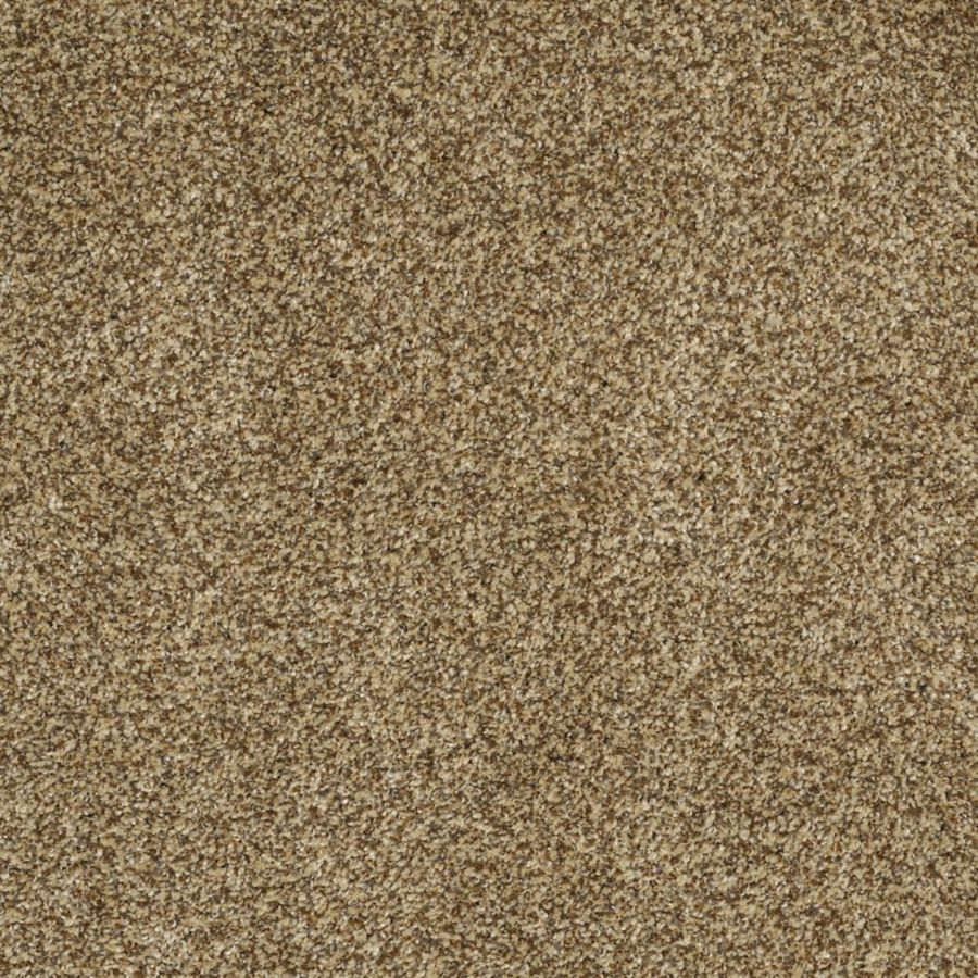 STAINMASTER TruSoft Private Oasis III Tigereye Textured Indoor Carpet