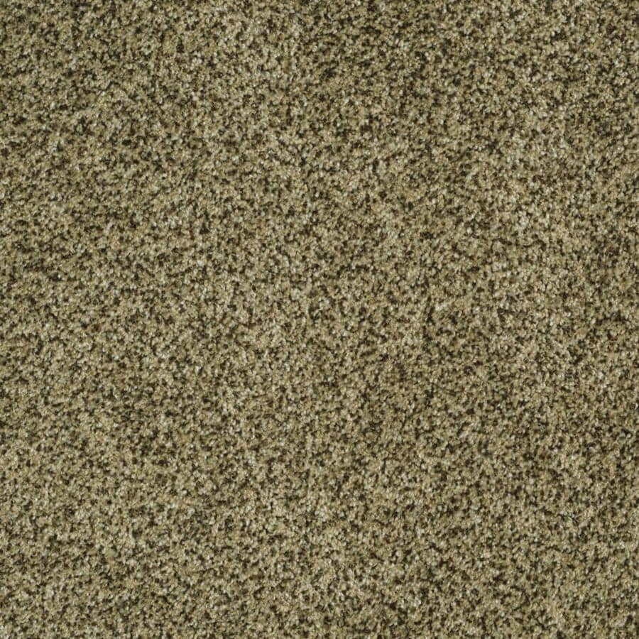 STAINMASTER TruSoft Private Oasis III Verde Textured Indoor Carpet