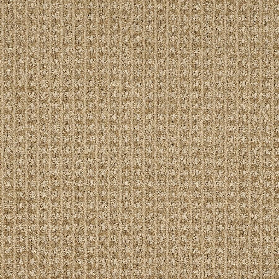 STAINMASTER TruSoft Rising Star Tan Wash Berber Indoor Carpet