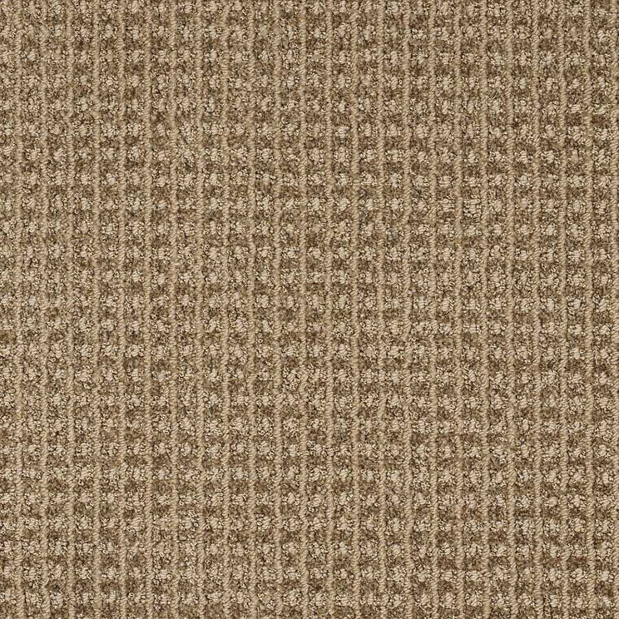 Shop stainmaster trusoft rising star taupe charm berber for Taupe color carpet
