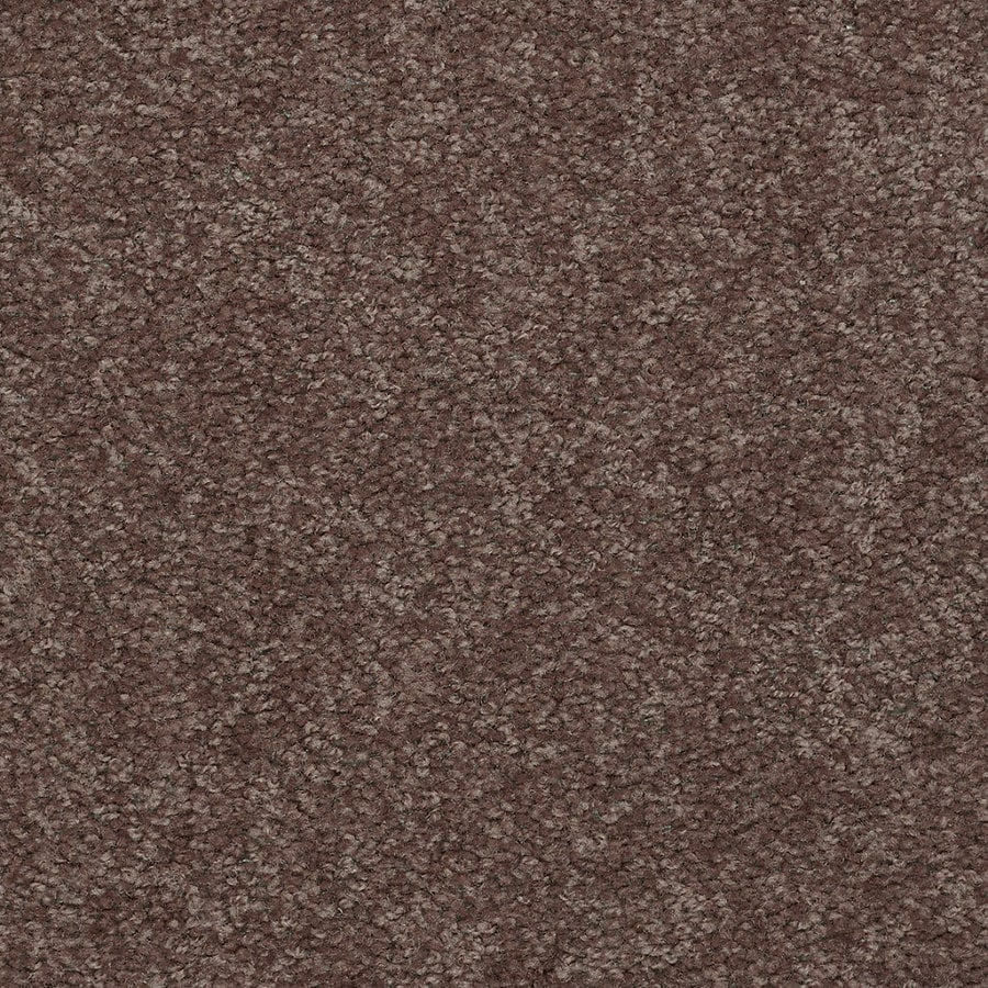 Shaw Stock Carpet Winter Wheat Textured Indoor Carpet