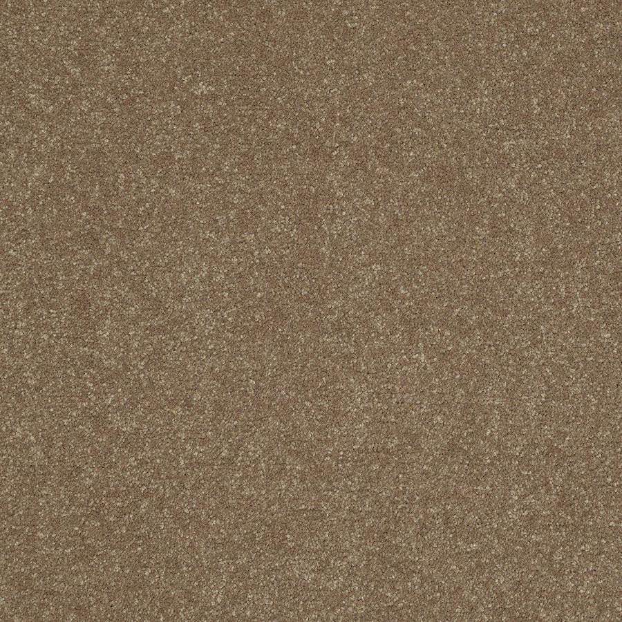 Shaw Gold Textured Indoor Carpet