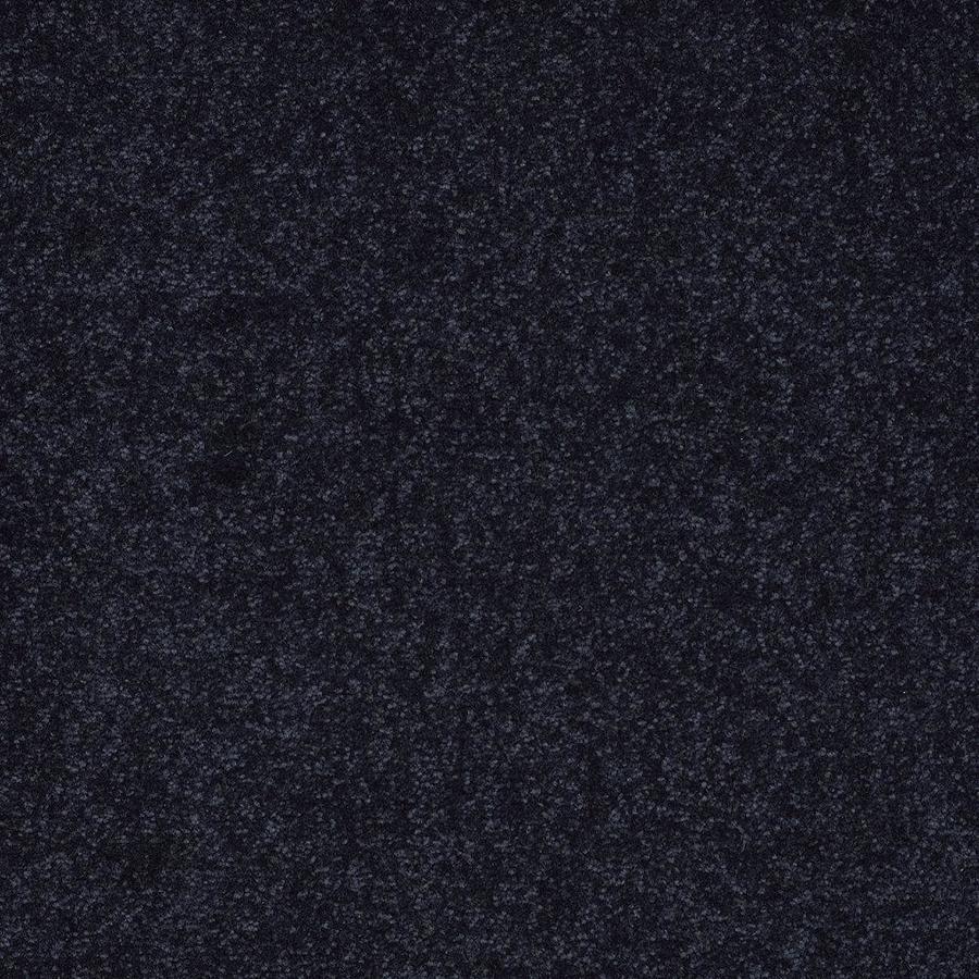 Shaw Blue Textured Carpet