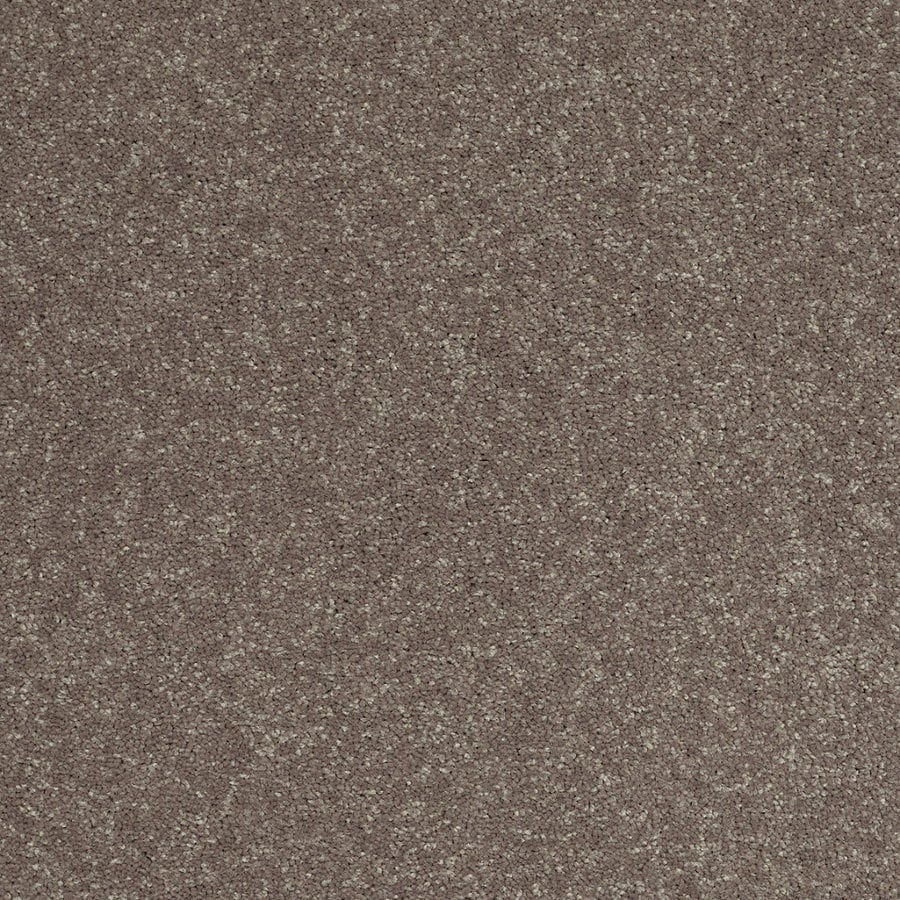 Shaw Cornerstone Collection Brown Textured Indoor Carpet