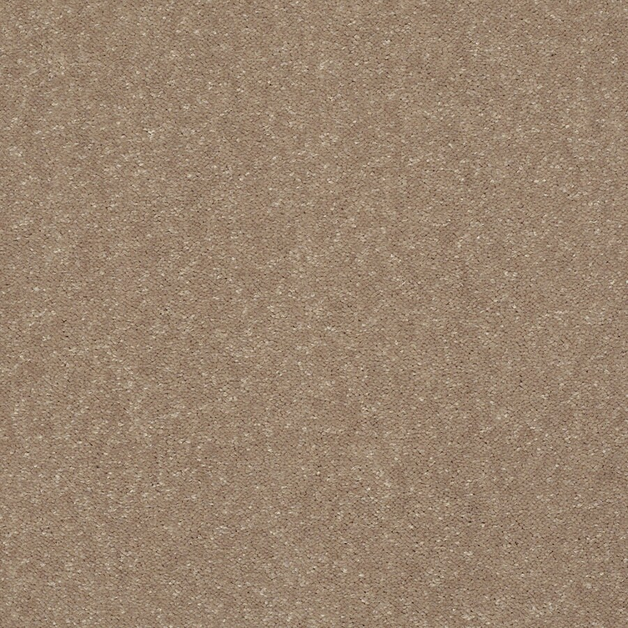 Shop Shaw Cornerstone Collection Brown Textured Indoor Carpet at Lowes.com