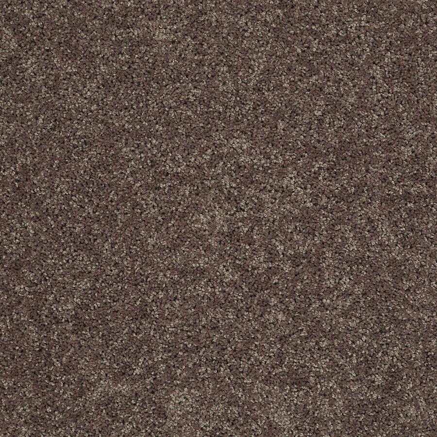 STAINMASTER Essentials Stock Carpet Brown Textured Indoor Carpet