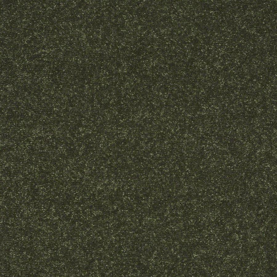 Shaw Passion Vine Textured Carpet