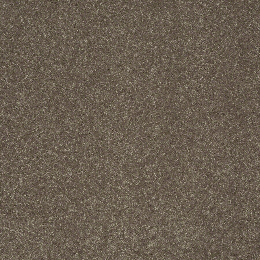 Shaw Cornerstone Lily Pad Textured Indoor Carpet