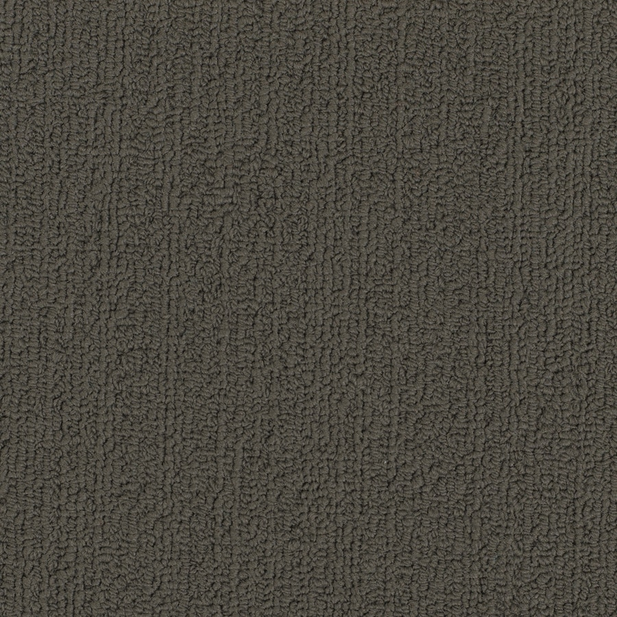Shaw Commercial Taupe Berber Indoor Carpet