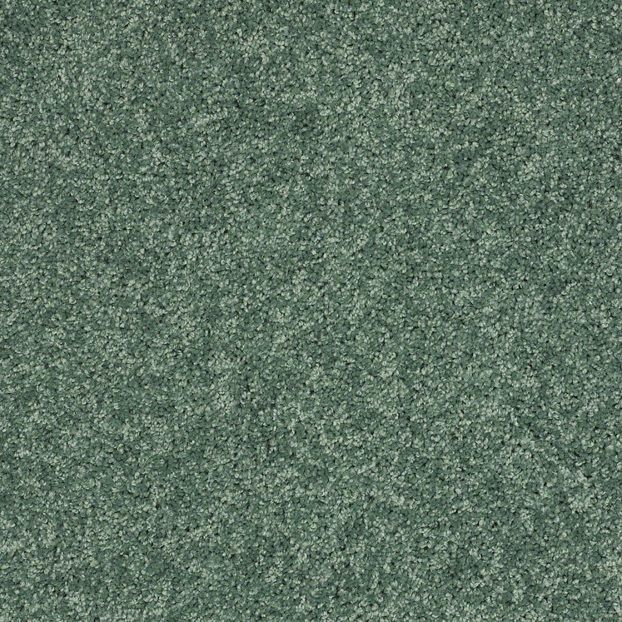 Shaw Cornerstone Leap Frog Textured Indoor Carpet