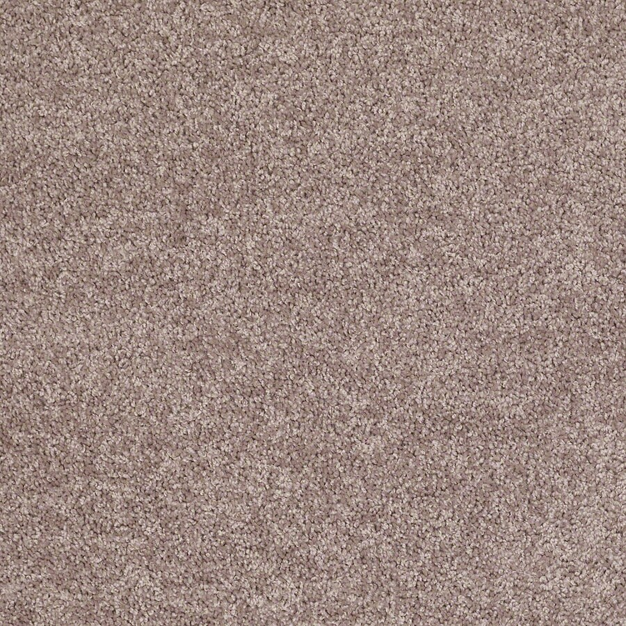 Shaw Cornerstone Hearth Stone Indoor Carpet