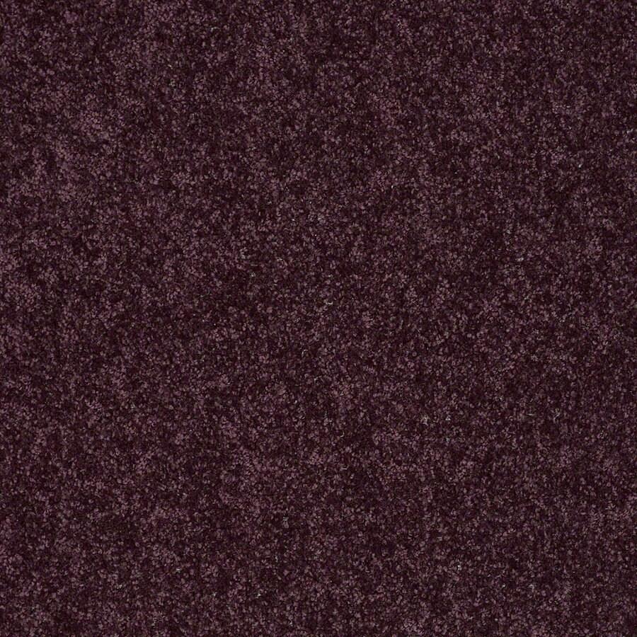 Shaw Cornerstone Royal Purple Indoor Carpet