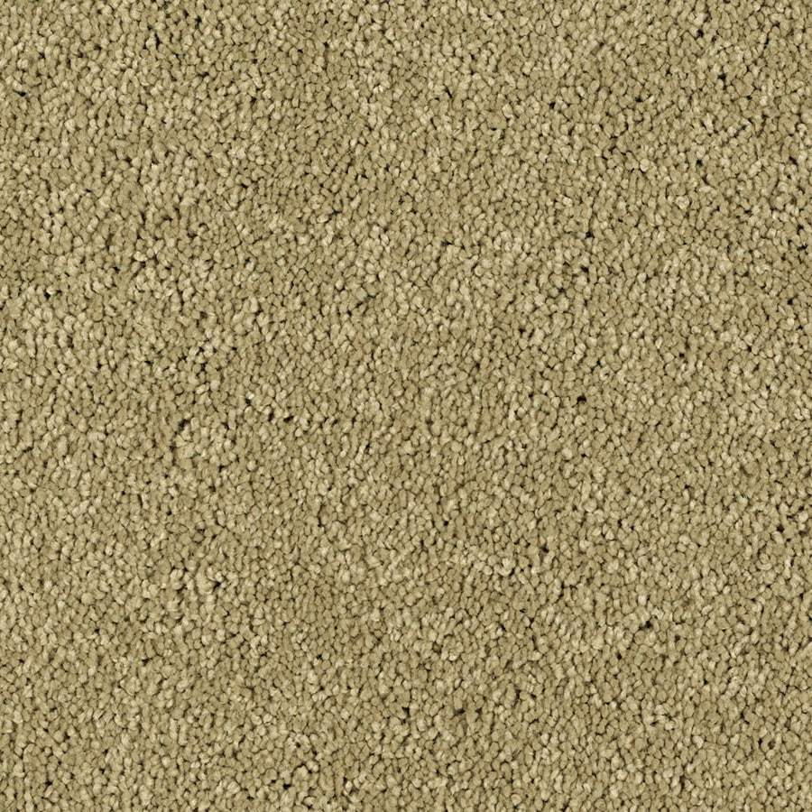 Shaw Essentials Soft and Cozy I - S Churn Textured Indoor Carpet