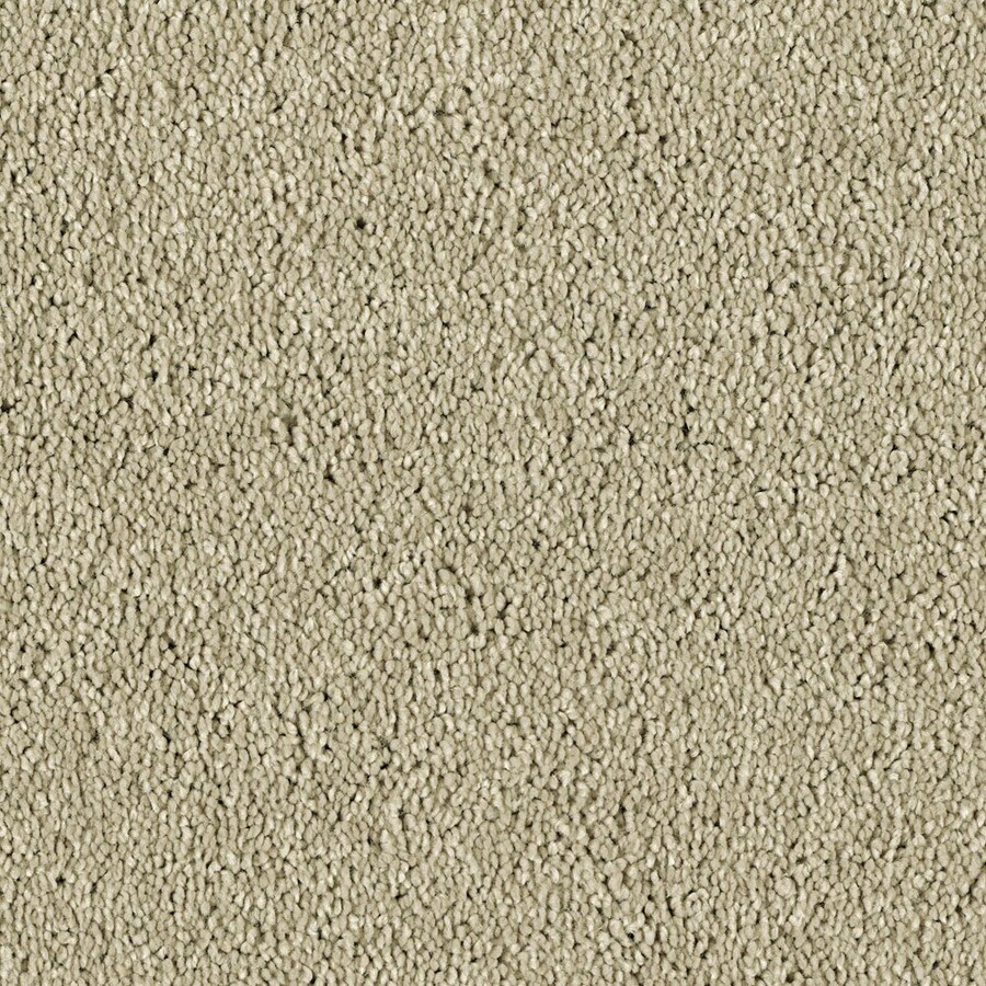 Shaw Essentials Soft and Cozy II - S Sand Swept Textured Indoor Carpet