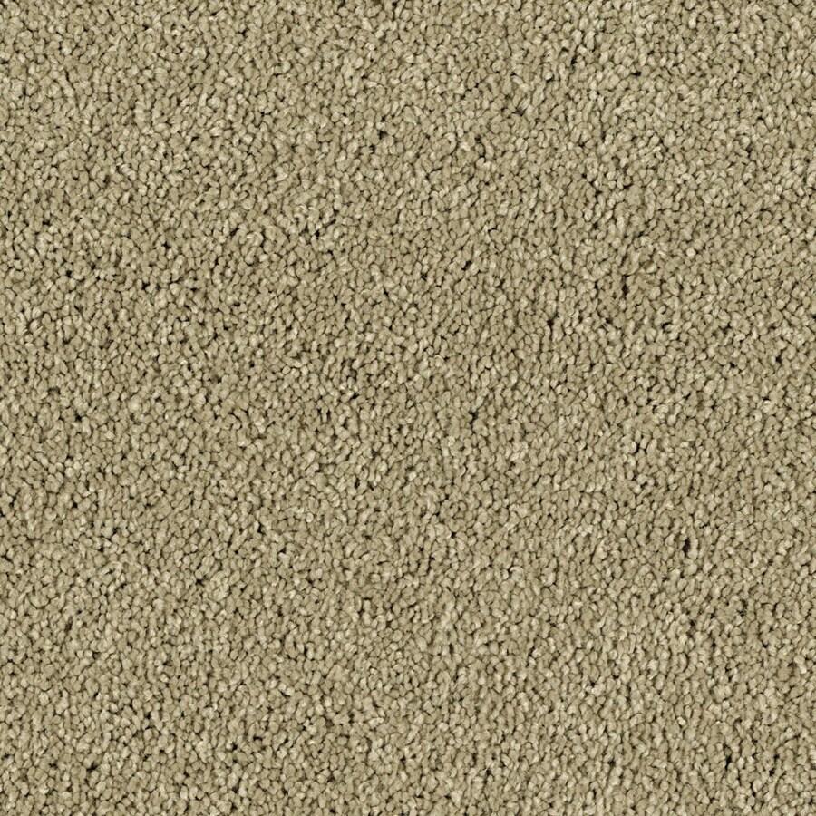 Shaw Essentials Soft and Cozy II - S Deer Field Textured Indoor Carpet