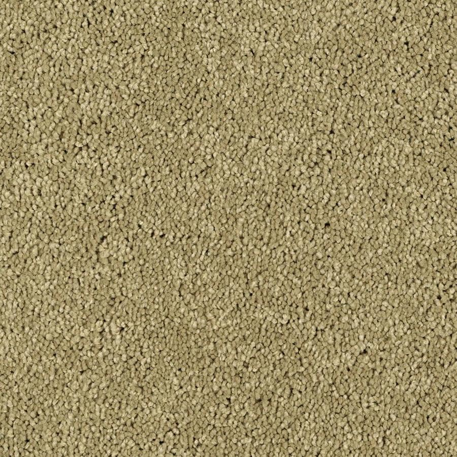 Shaw Essentials Soft and Cozy II - S Churn Textured Indoor Carpet