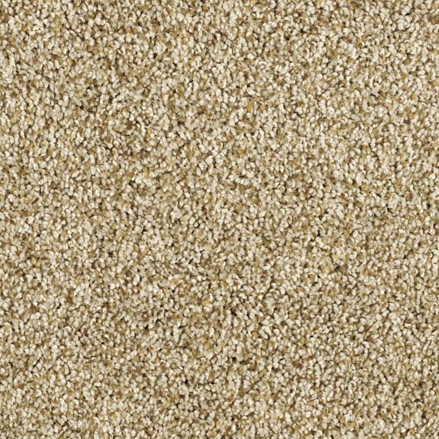 Shaw Essentials Soft and Cozy II - T Dunes Textured Indoor Carpet