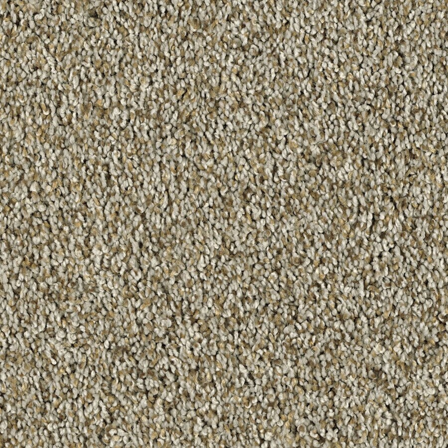 Shaw Essentials Soft and Cozy II - T Pebble Path Textured Indoor Carpet