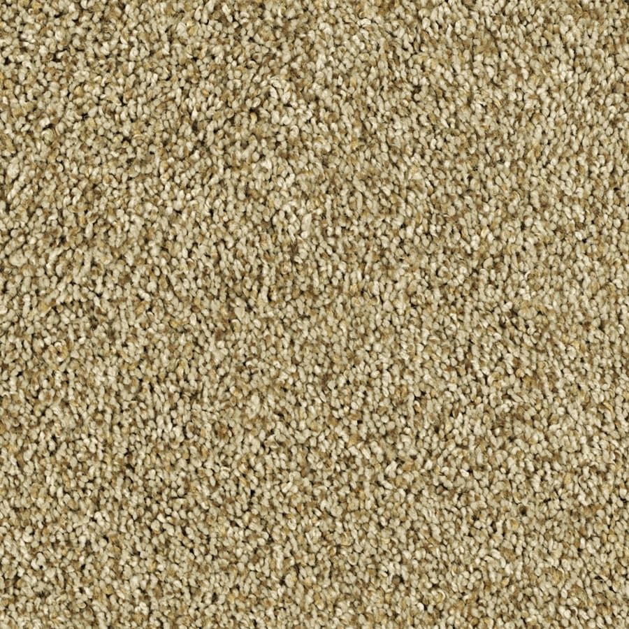 Shaw Essentials Soft and Cozy III (T) Golden Oak Textured Indoor Carpet