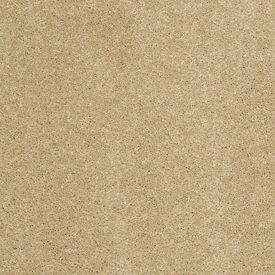 STAINMASTER TruSoft Luscious IV (S) Honey Textured Indoor Carpet