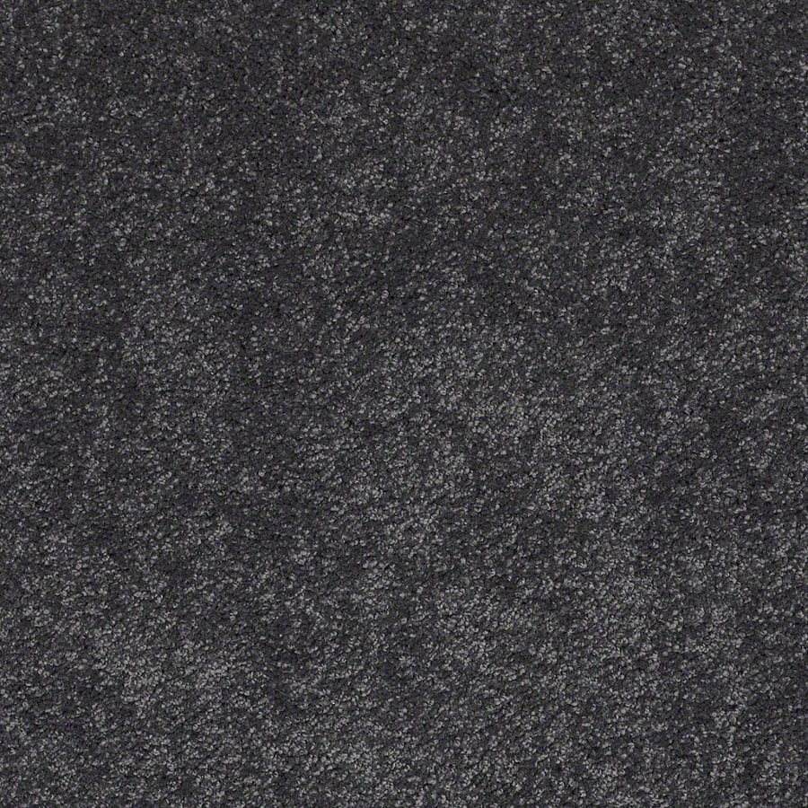 STAINMASTER TruSoft Luscious IV (S) After Midnight Textured Indoor Carpet