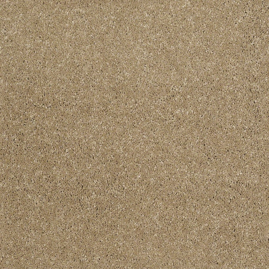 STAINMASTER TruSoft Luscious IV (S) Flax Textured Indoor Carpet