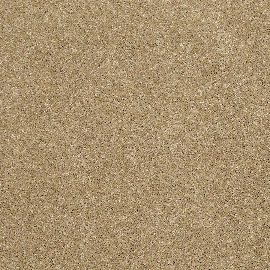 STAINMASTER TruSoft Luscious IV (S) Cappuccino Textured Indoor Carpet