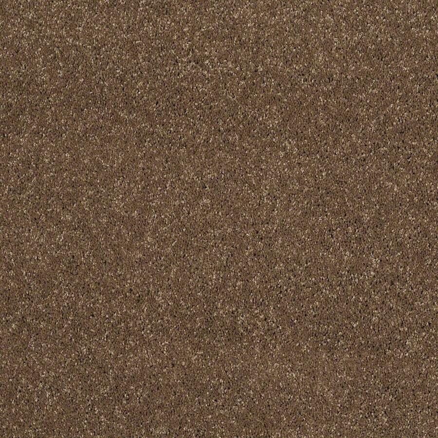 STAINMASTER TruSoft Luscious IV (S) Chestnut Textured Indoor Carpet