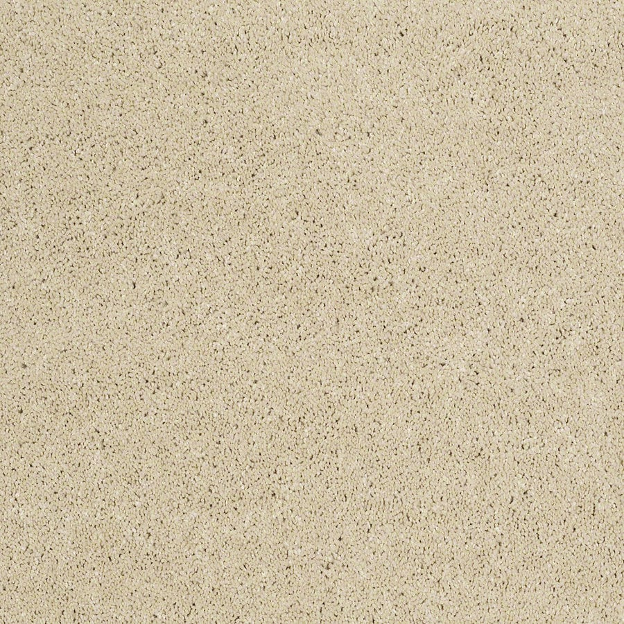 STAINMASTER TruSoft Luscious IV (S) Plateau Textured Indoor Carpet