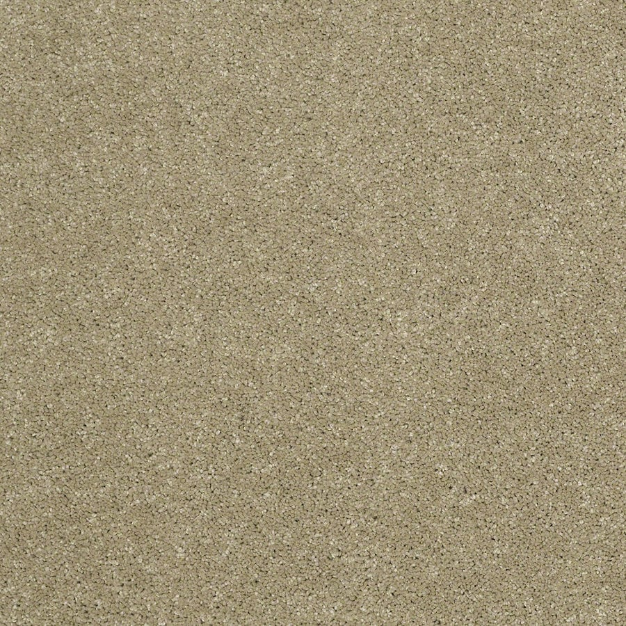 STAINMASTER TruSoft Luscious IV (S) Bay Laurel Textured Indoor Carpet