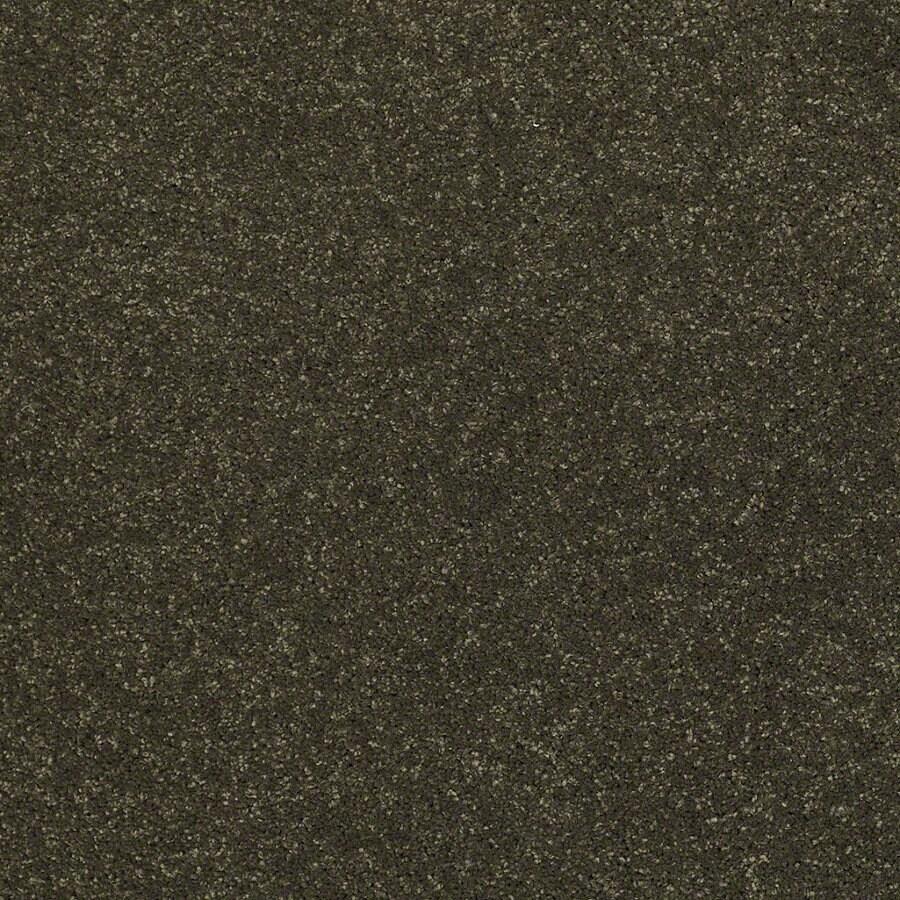 STAINMASTER TruSoft Luscious IV (S) Vineyard Textured Indoor Carpet