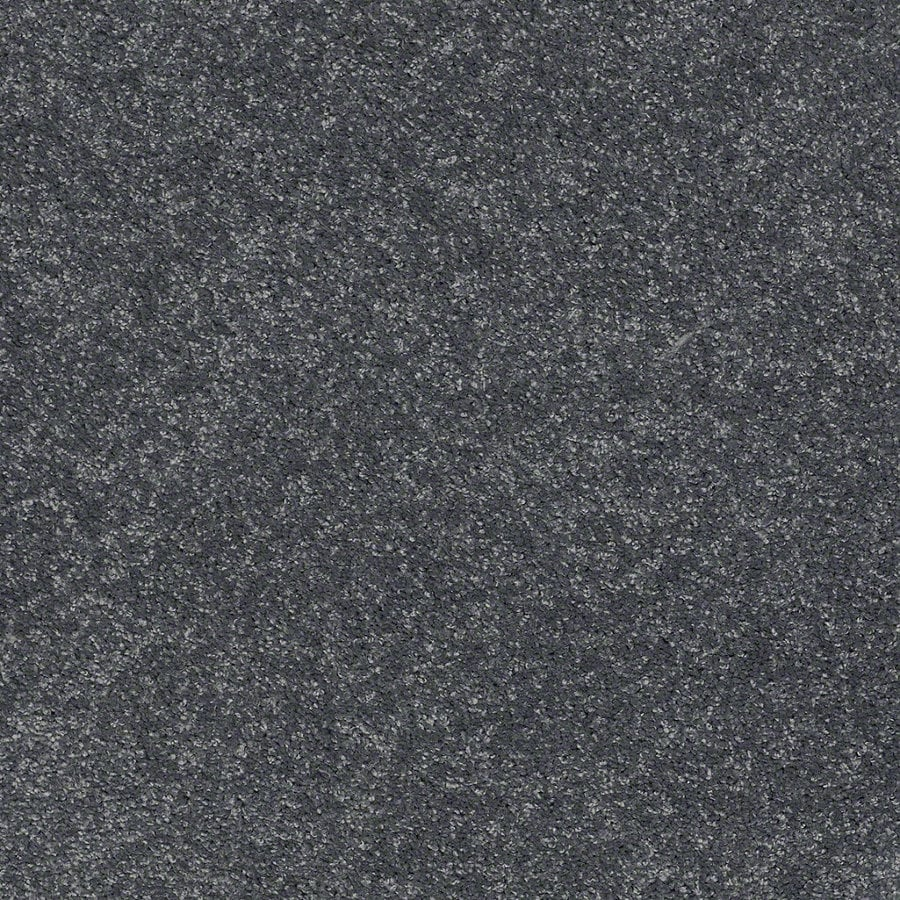 STAINMASTER TruSoft Luscious IV (S) Dusk Textured Indoor Carpet