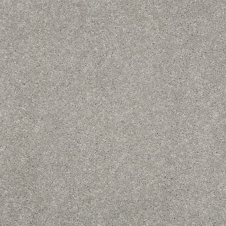 STAINMASTER TruSoft Luscious IV (S) Carbon Textured Indoor Carpet