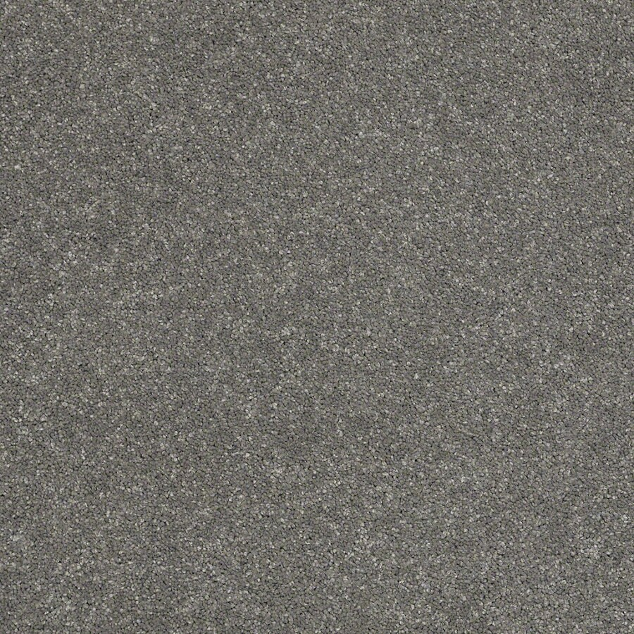 STAINMASTER TruSoft Luscious IV (S) Slate Textured Indoor Carpet