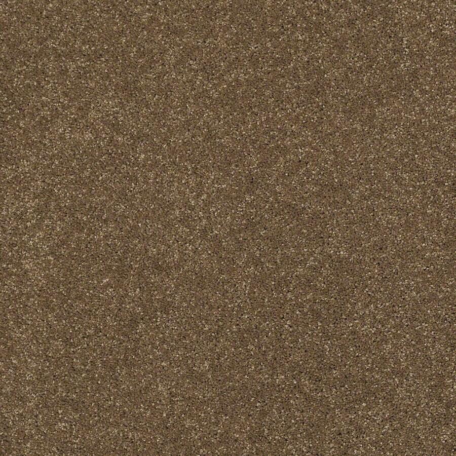 STAINMASTER TruSoft Luscious IV (S) Tea Wash Textured Indoor Carpet