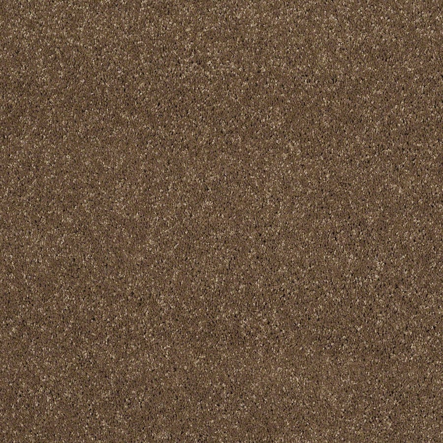 STAINMASTER TruSoft Luscious IV (S) Chestnut Textured Indoor Carpet