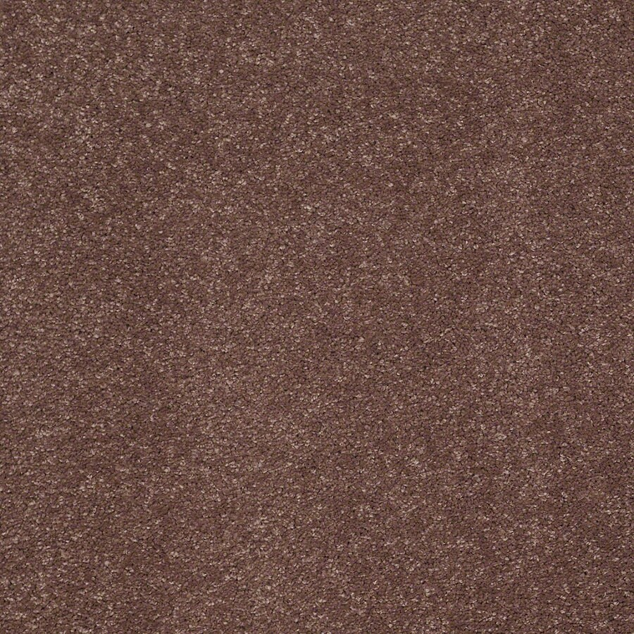 STAINMASTER TruSoft Luscious IV (S) Late Afternoon Textured Indoor Carpet
