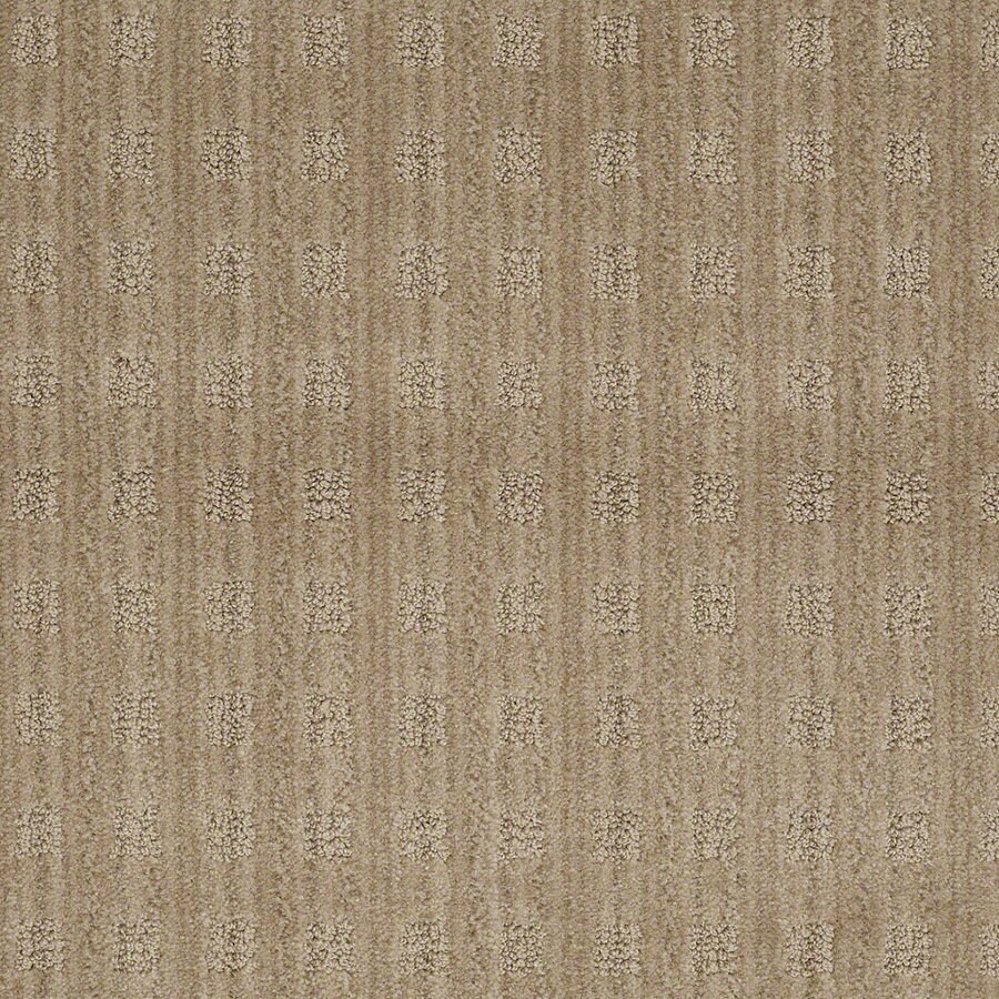 STAINMASTER Active Family Apricot Lane Fine Grain Berber Indoor Carpet