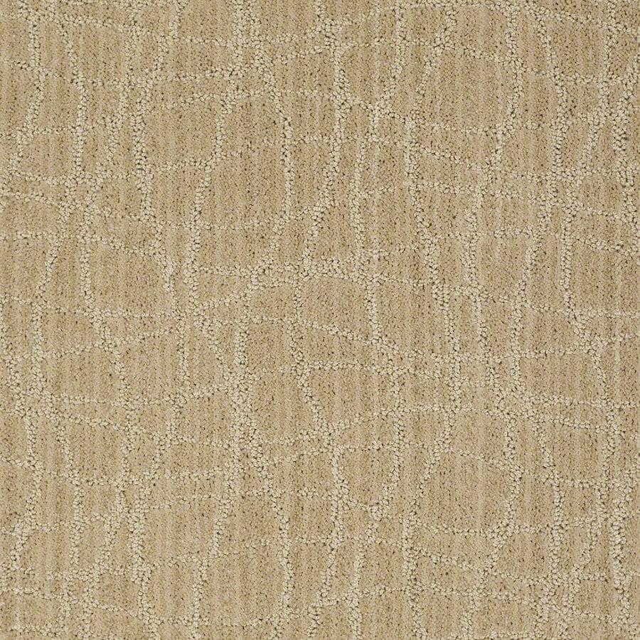 STAINMASTER Active Family Holly Springs Supernova Berber Indoor Carpet