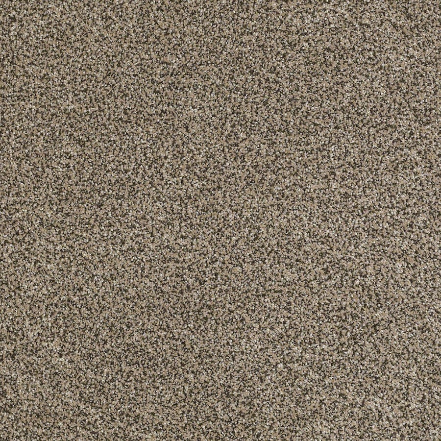 STAINMASTER Essentials Stone Mountain I Moonstone Textured Indoor Carpet