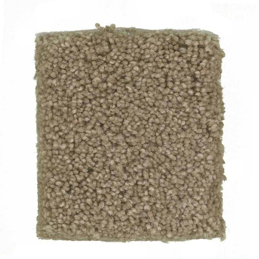 STAINMASTER PetProtect Greyhound - Feature Buy Pomeranian Textured Indoor Carpet