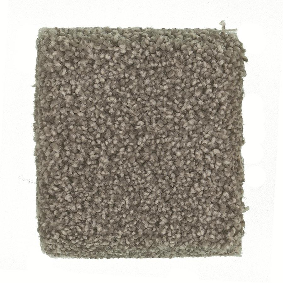 STAINMASTER PetProtect Great Dane - Feature Buy Bouvier Textured Indoor Carpet