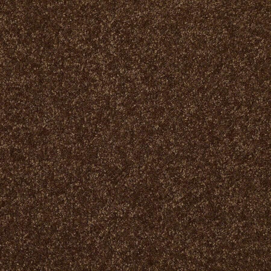 Shop Shaw Patina Textured Indoor Carpet At Lowescom