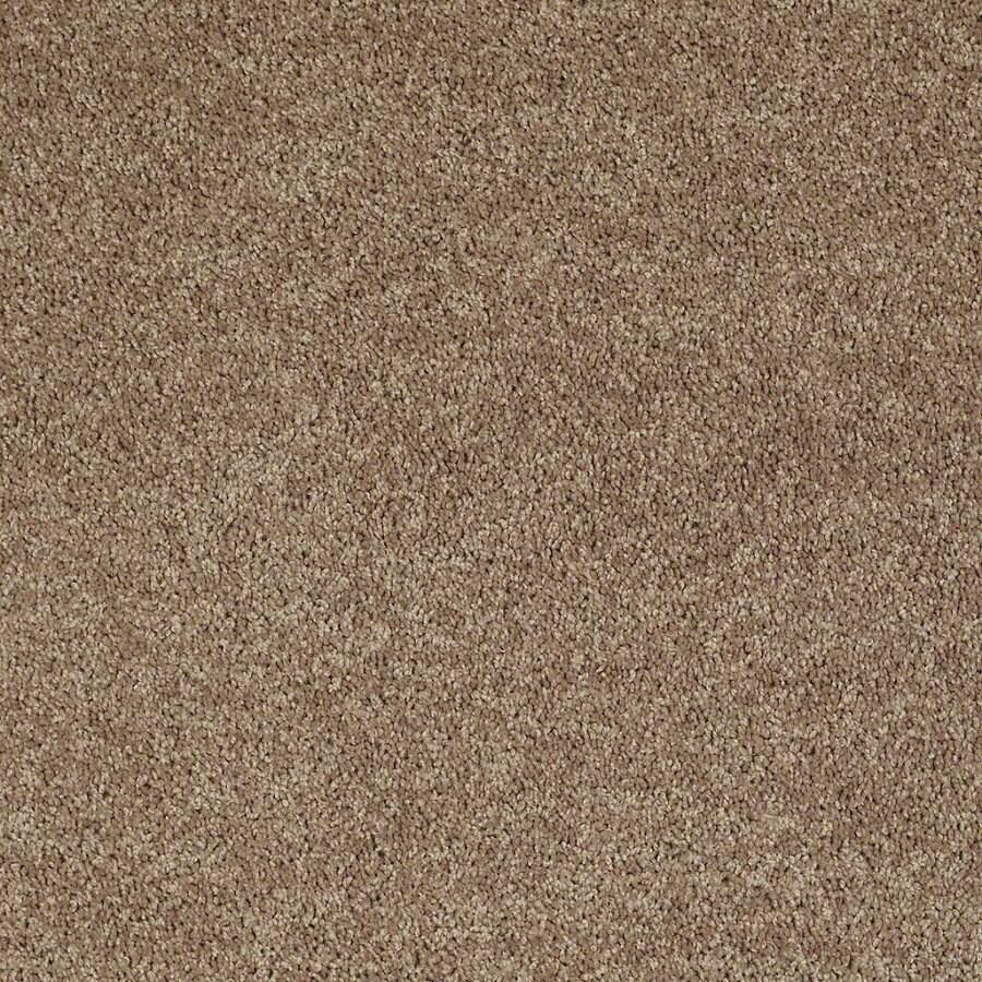 Shaw Stock Putty Textured Indoor Carpet