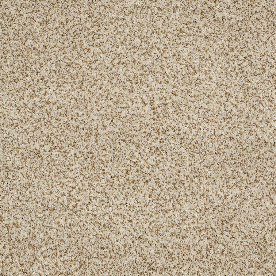 STAINMASTER TruSoft Private Oasis IV Cappuccino Textured Indoor Carpet