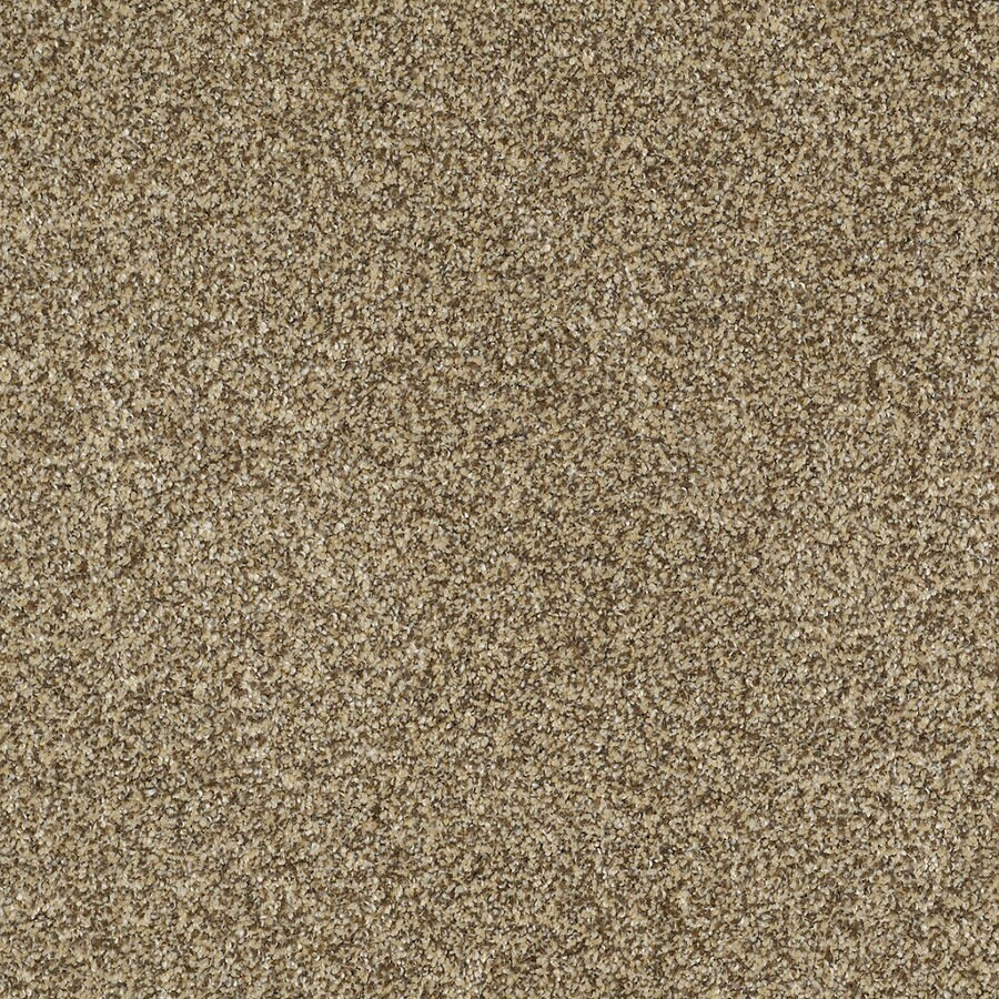 STAINMASTER TruSoft Private Oasis IV Sahara Gold Textured Indoor Carpet