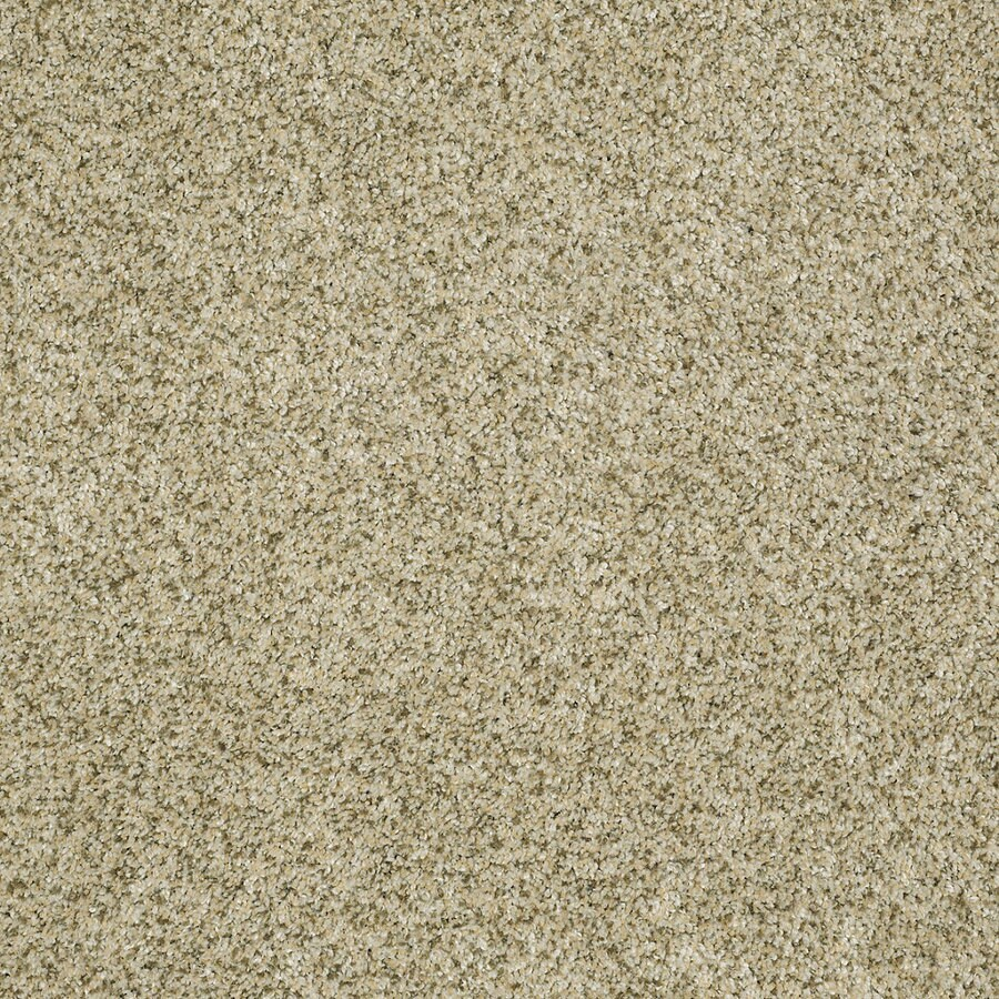 STAINMASTER TruSoft Private Oasis IV Sea Foam Textured Indoor Carpet